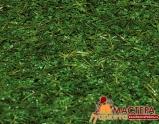 Искусственная трава Balta Ibiza Verde